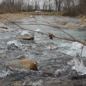 ice on newly constructed riffle, looking downstream