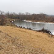 Bend 1 Toewood, looking upstream